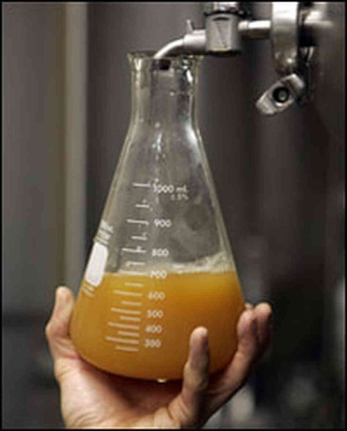beer measure erlenmeyer flask funny
