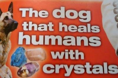 dogs what weird - 7463173888