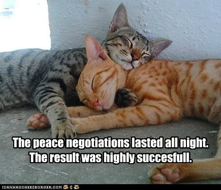 negotiate,peace,nap