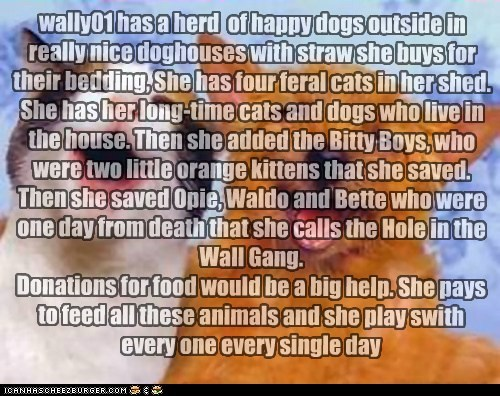 wally01 has a herd  of happy dogs outside in really nice doghouses with straw she buys for their bedding, She has four feral cats in her shed. She has her long-time cats and dogs who live in the house. Then she added the Bitty Boys, who were two little or