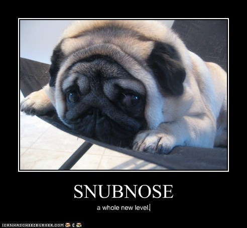 SNUBNOSE a whole new level.