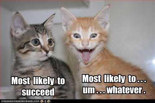 Most Likely To funny succeed
