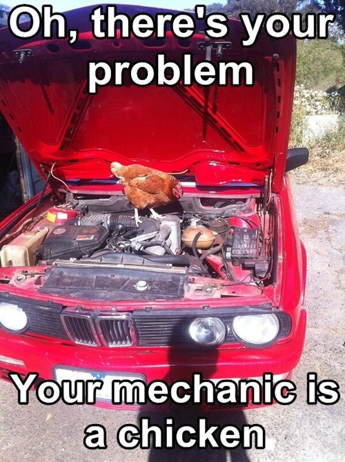 mechanics IRL chickens funny - 7466384384