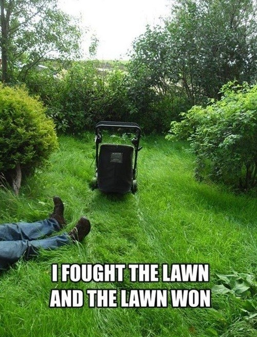 cutting grass,i fought the law,lawns,funny
