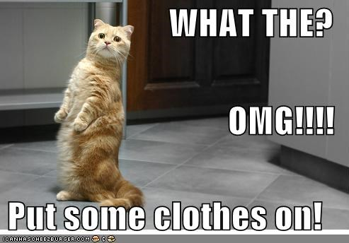 WHAT THE? OMG!!!! Put some clothes on! - Cheezburger - Funny Memes ...