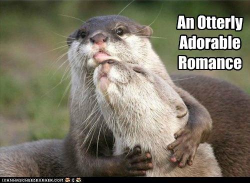 romance puns otter funny - 7466862336