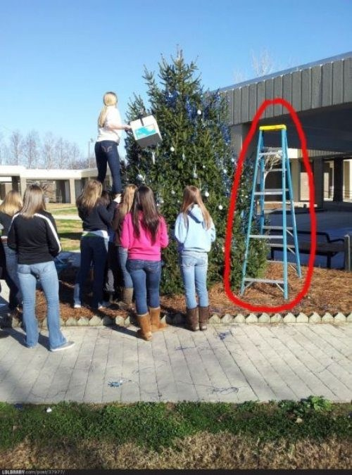 ladder,facepalm,genius,funny
