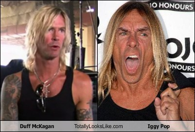 totally looks like,funny,iggy pop,duff mckagan