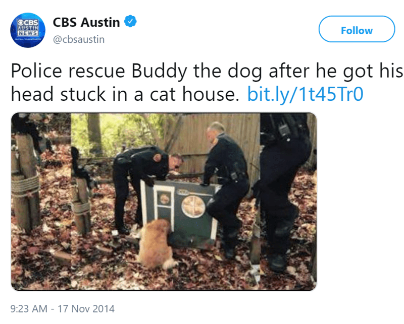 cops heartwarming Cats police rescue - 7468805