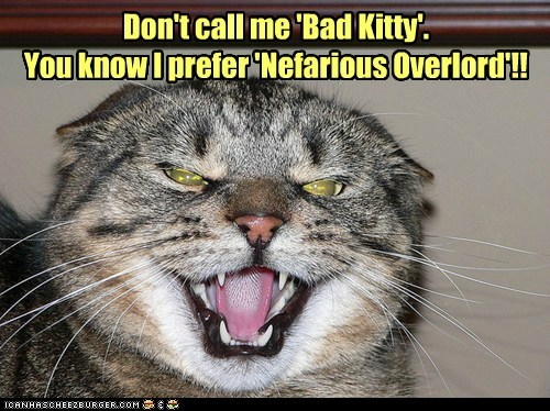 'Bad Kitty' is SO wimpy!