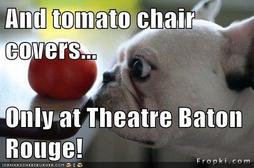 Cheezburger Image 7471080960