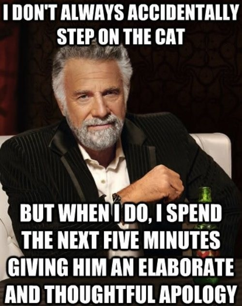 the most interesting man in the world Memes funny - 7471308800