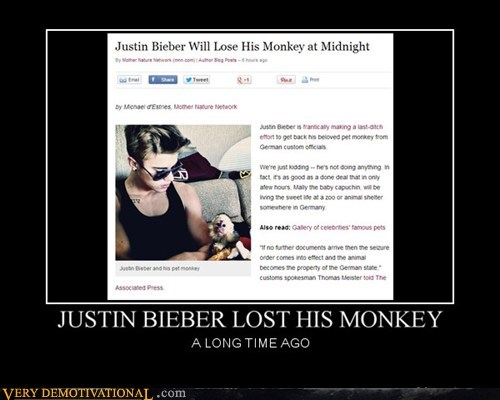 wtf,pet,monkey,funny,justin bieber
