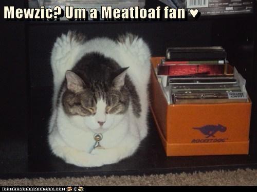 Mewzic? Um a Meatloaf fan ♥