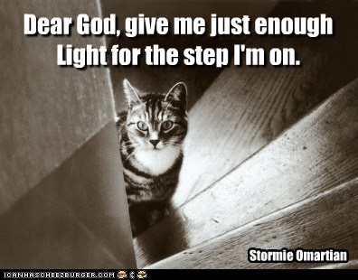 Dear God, give me just enough Light for the step I'm on. Stormie Omartian