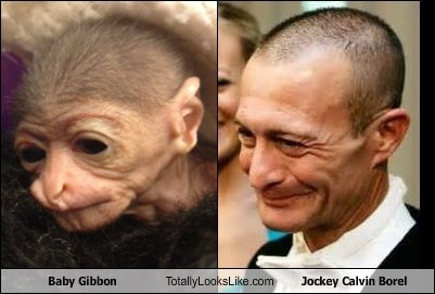 calvin borel critters gibbons totally looks like funny - 7476370944