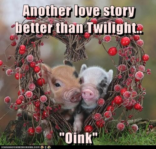 hammy still a better love story twilight pig funny - 7476535296
