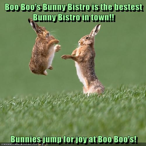 Boo Boo's Bunny Bistro is the bestest Bunny Bistro in town!! Bunnies jump for joy at Boo Boo's!