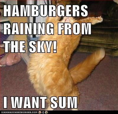 HAMBURGERS RAINING FROM THE SKY!  I WANT SUM