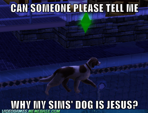 dogs wtf The Sims funny walk on water - 7477259520