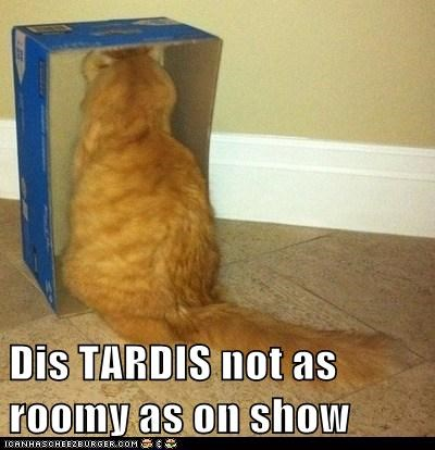Dis TARDIS not as roomy as on show