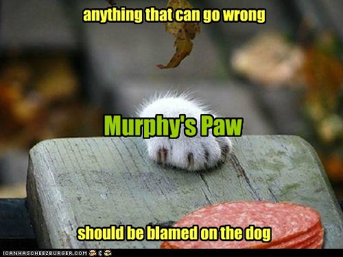 anything that can go wrong should be blamed on the dog Murphy's Paw