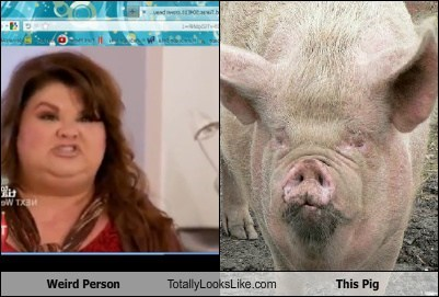 Weird Person Totally Looks Like This Pig