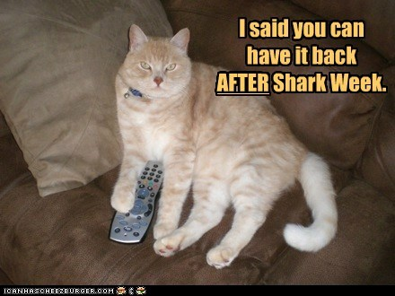 I said you can have it back AFTER Shark Week. AFTER