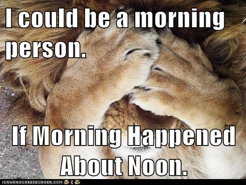 noon morning person lion