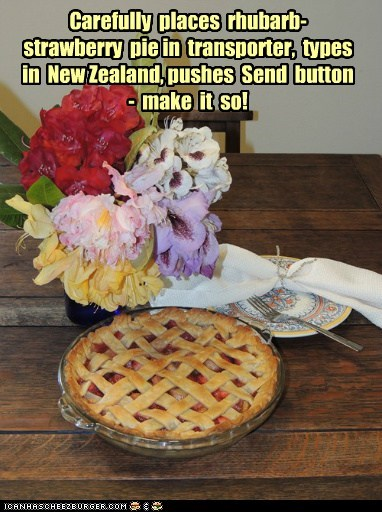 Carefully places rhubarb-strawberry pie in transporter, types in New Zealand, pushes Send button - make it so!