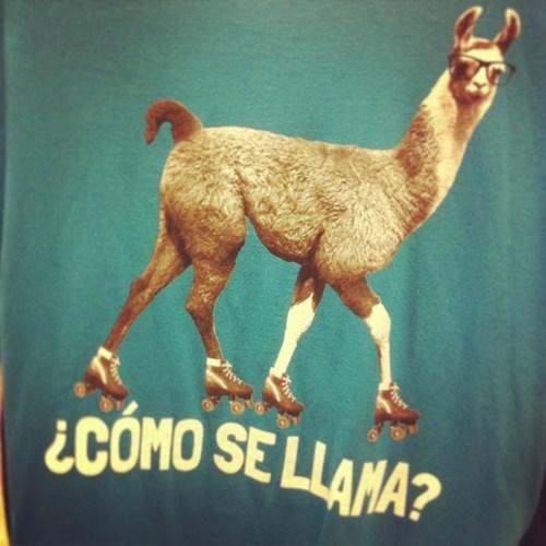 llama spanish puns funny - 7482264576