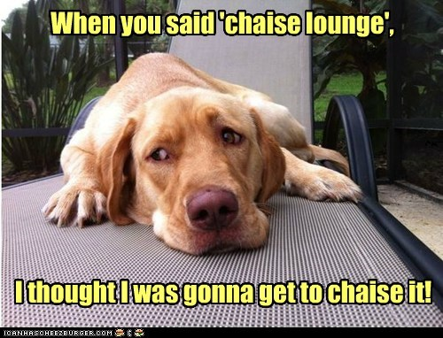 When you said 'chaise lounge', I thought I was gonna get to chaise it!