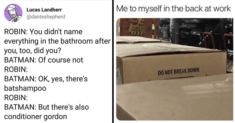 Funny random memes, funny tweets, tumblr.