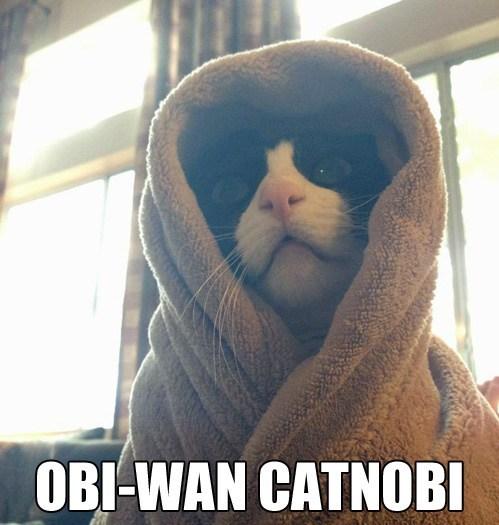 obi-wan kenobi star wars funny - 7482688000