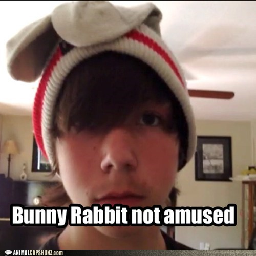 Bunny Rabbit not amused