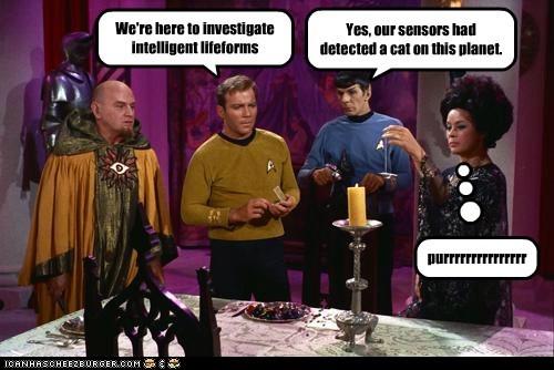 Star Trek Cats funny - 7484092672