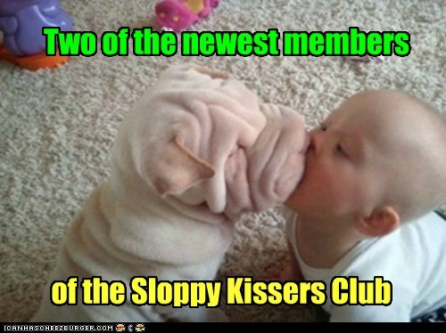 KISS,sloppy,funny