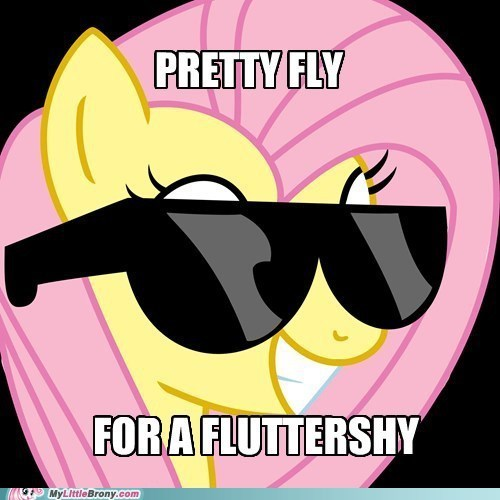 sunglasses deal with it,offspring,pretty fly for a white guy,fluttershy,funny