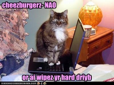 cheezburgerz- NAO or ai wipez yr hard driyb