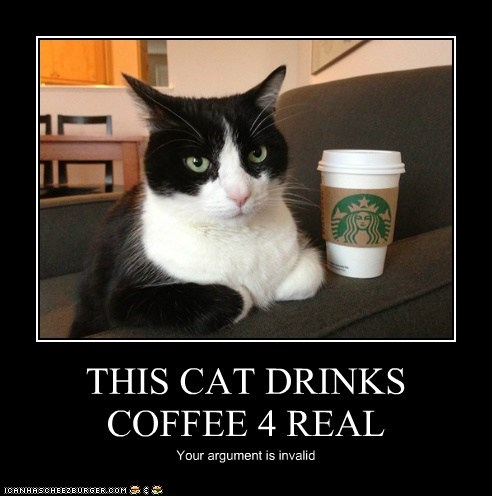 THIS CAT DRINKS COFFEE 4 REAL Your argument is invalid