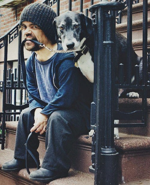 Game of Thrones dogs peter dinklage celeb - 7486474240
