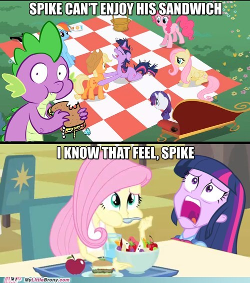 spike twilight sparkle fluttershy funny - 7486771968