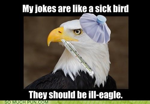 eagles,puns,funny