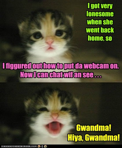 kids,webcam,grandma,cute,kitty,chat