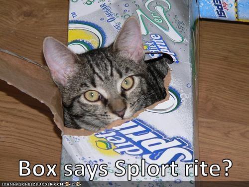 splort box soda funny - 7489602304