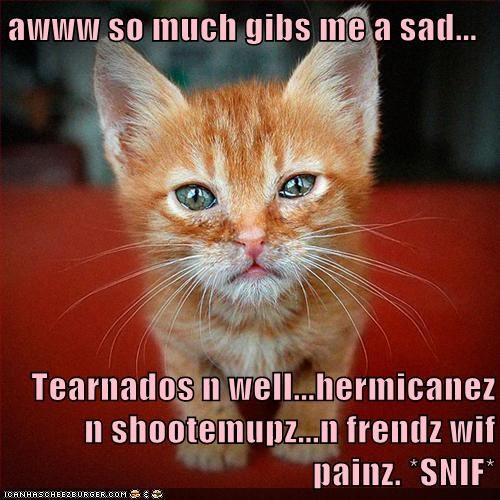 awww so much gibs me a sad...  Tearnados n well...hermicanez n shootemupz...n frendz wif painz. *SNIF*