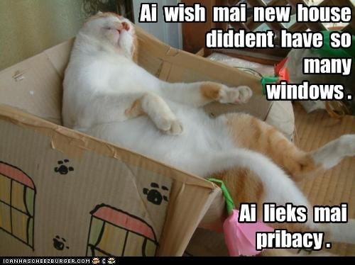 Ai wish mai new house diddent have so many windows . Ai lieks mai pribacy .