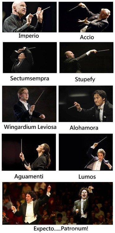 Music Harry Potter orchestras - 7490204672