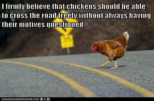 I firmly believe that chickens should be able to cross the road freely without always having their motives questioned.