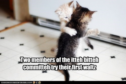 Two members of the itteh bitteh committeh try their first waltz